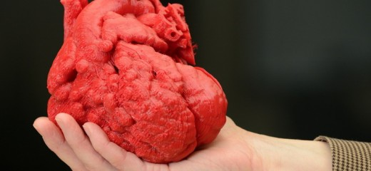 Un joven biólogo recrea órganos en 3D que permiten emular operaciones quirúrgicas