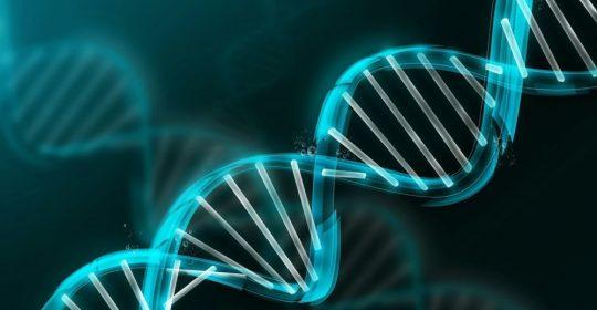 Identifican mediante PET Cerebral una proteina causante del Alzheimer.