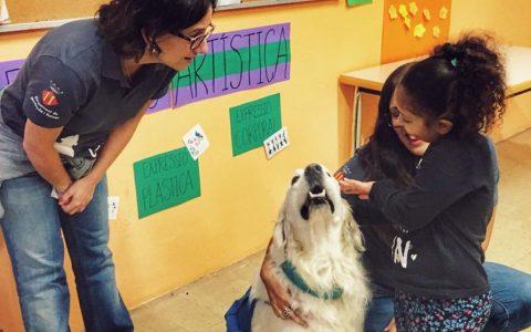 Los perros, nuevos ayudantes en la inclusión de alumnos en riesgo de exclusión