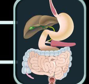 Tumores de tipo neuroendocrino