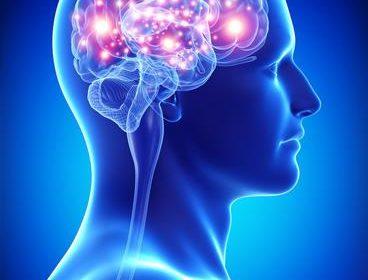 El uso de las resonancias magnéticas revela cómo se comporta el cerebro ante una compra