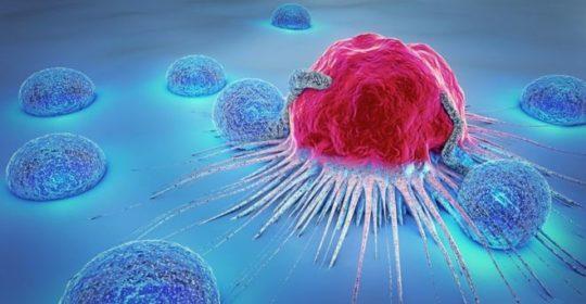 Uno de cada tres españoles padecerá cáncer a lo largo de su vida