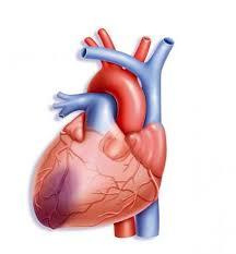 Beneficios de la resonancia magnética para pacientes con infarto agudo de miocardio