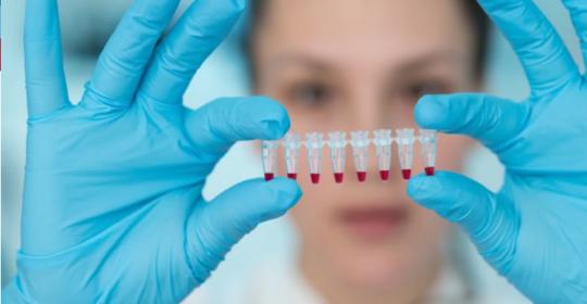 Dos fármacos combinados reducirían los casos de cáncer de páncreas