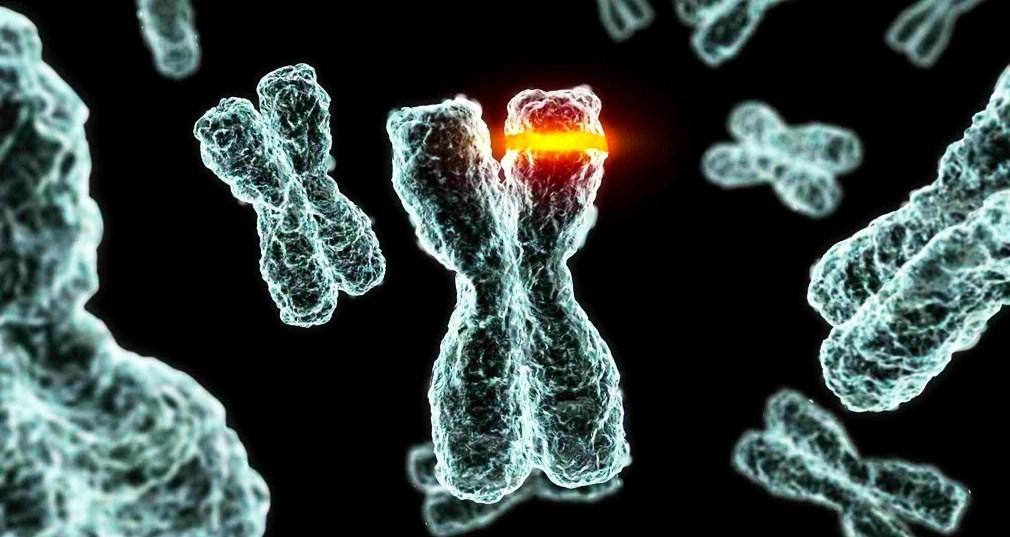 Esquiva la enfermedad de Alzheimer gracias a un mutación genética