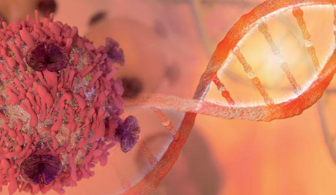Sobre la mortalidad del cáncer