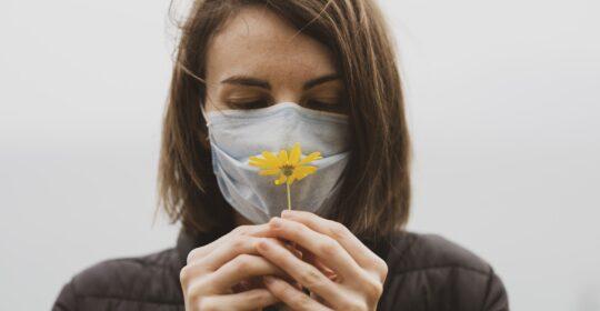 ¿Porqué no hay gripe?