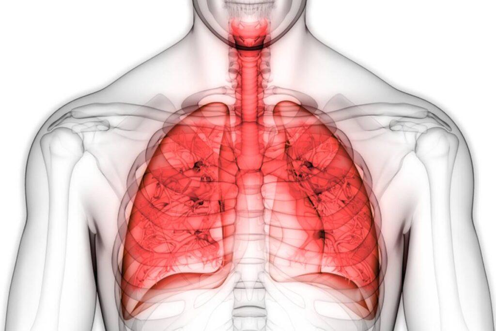 El TAC de torax ofrece resultados relevantes para las enfermedades cardiopulmonares